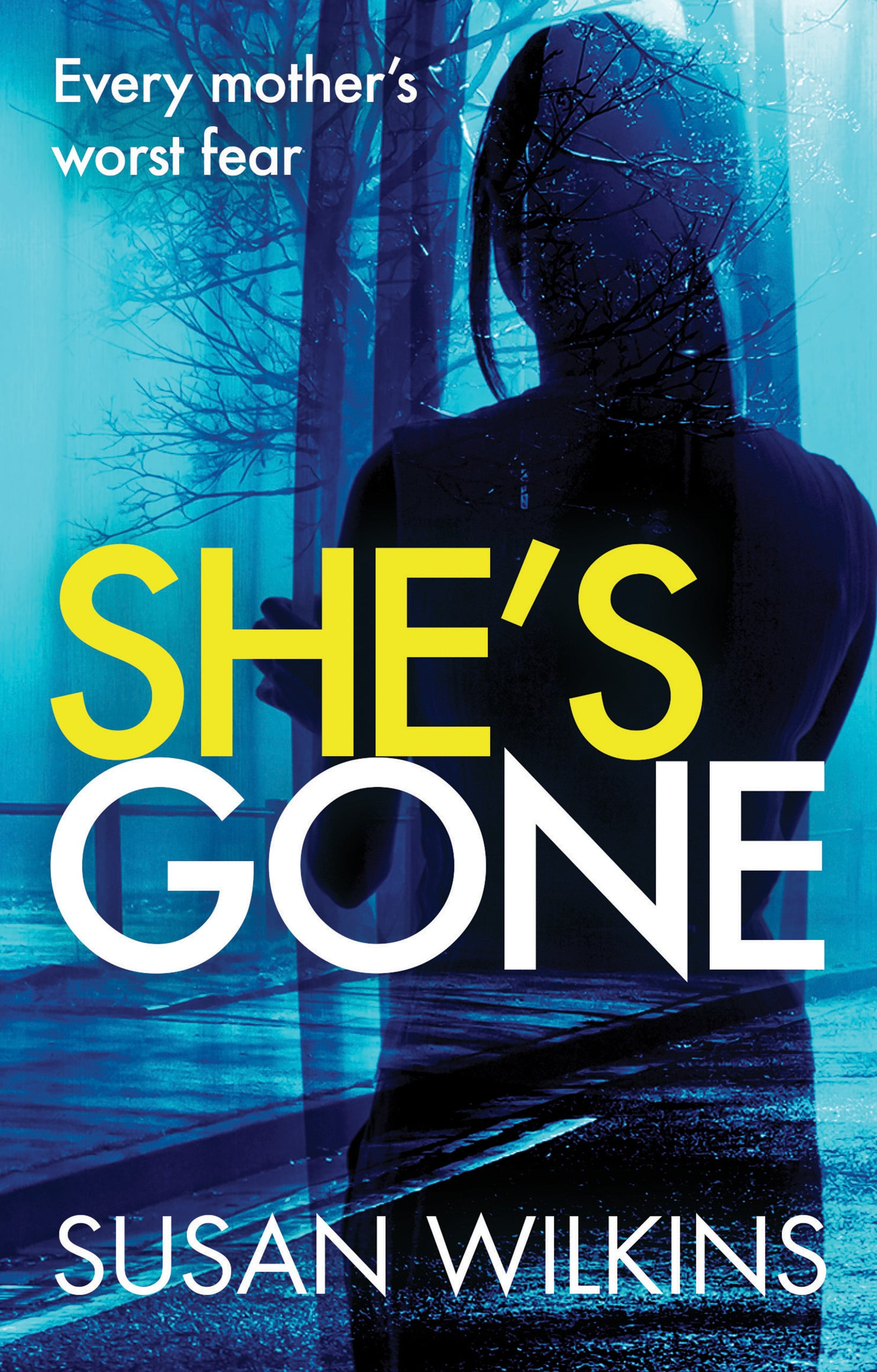 Image of book cover She's Gone by Susan Wilkins. A lone female figure standing at a large window looking out onto a dark street.